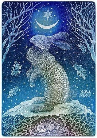 solstice hare by doreen foster