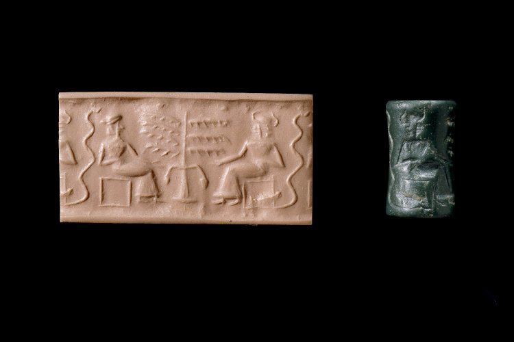 Meso cylinder seal